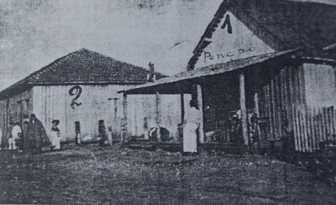 Avenida Paraná quando os jovens chegaram à colônia (Foto: Acervo da Fundação Cultural de Paranavaí)