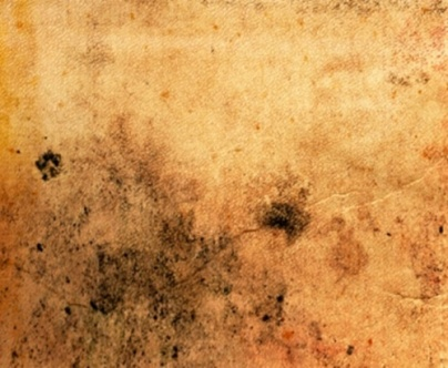 Aspecto do papel envelhecido por longo período com fezes de grilo (Foto: Reprodução)