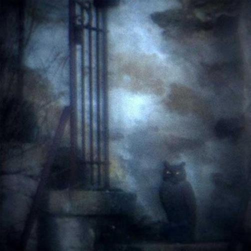 Foto de Johnson parece saída de um cenário de de Poe