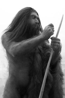 cavemanopti